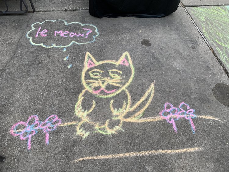 Funny Cat Chalk Drawing